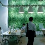 microsoft future - decorative glass